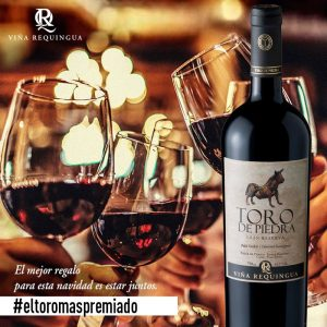 Rượu vang Chile Toro De Piedra gran reserva Cabernet Sauvignon