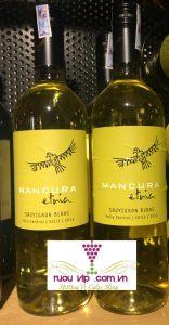 Mancura Sauvignon Blanc