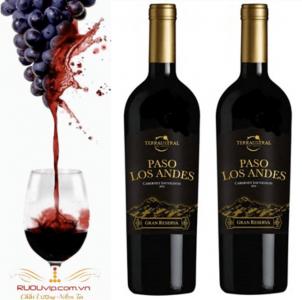 Rượu Vang Chile Paso Los Andes Gran Reserva